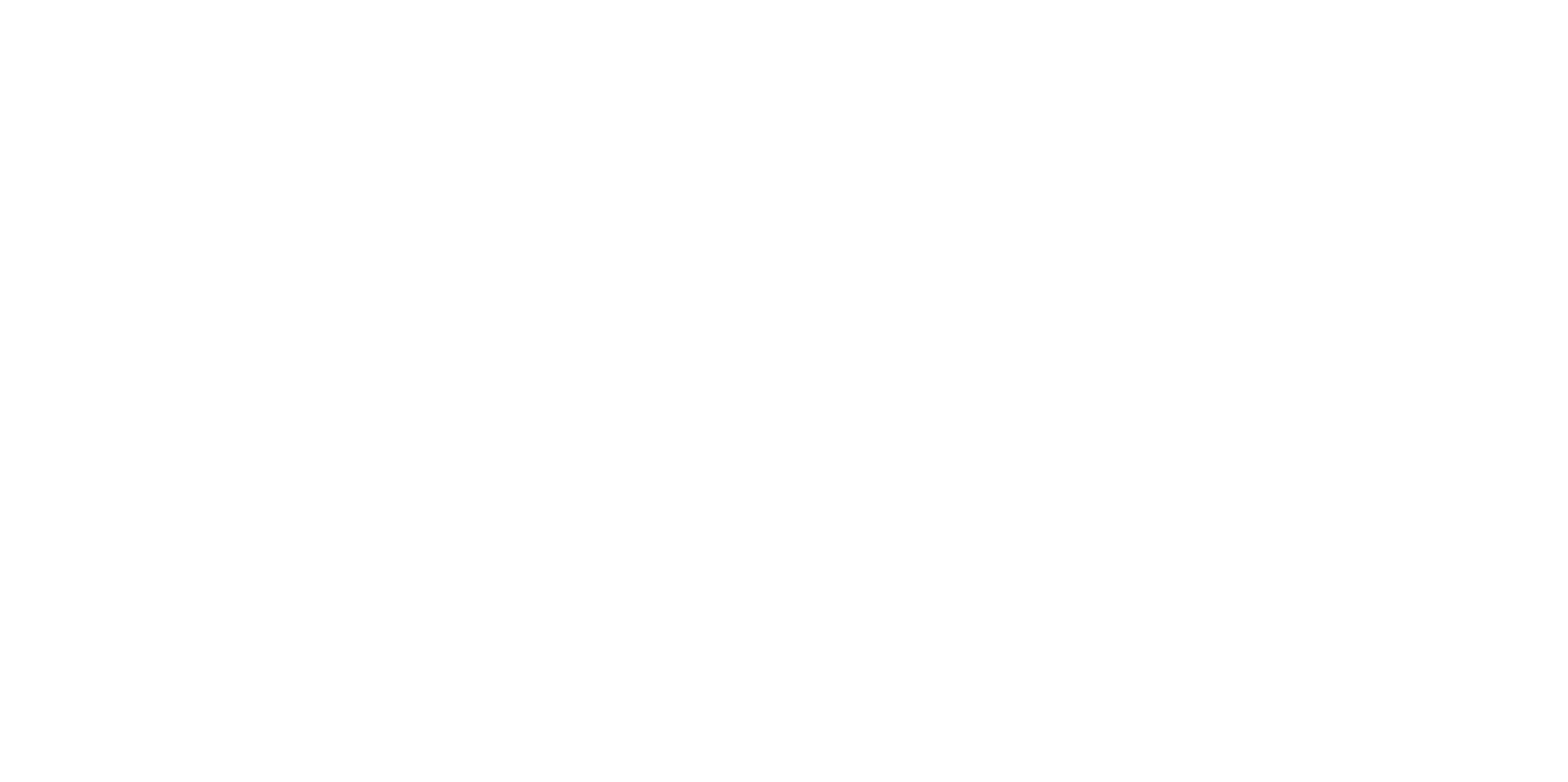 LOGO SHADDOWS BLANC